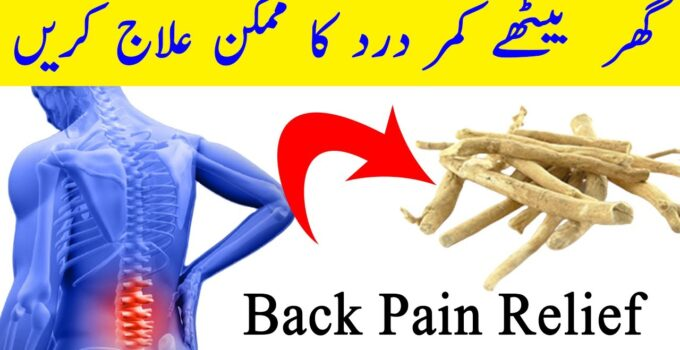 How To Treat Back Pain At Home - Chestnuts Benefits In Urdu Hindi